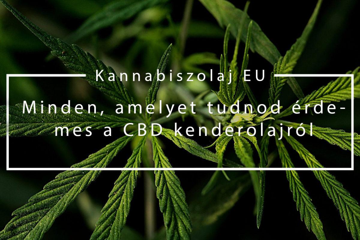 (Kannabiszolaj EU) Minden, amelyet tudnod érdemes a CBD kenderolajról